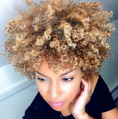 natural curly african american hairstyles Natural Curly African American Hairstyles natural curly african american hairstyles 21