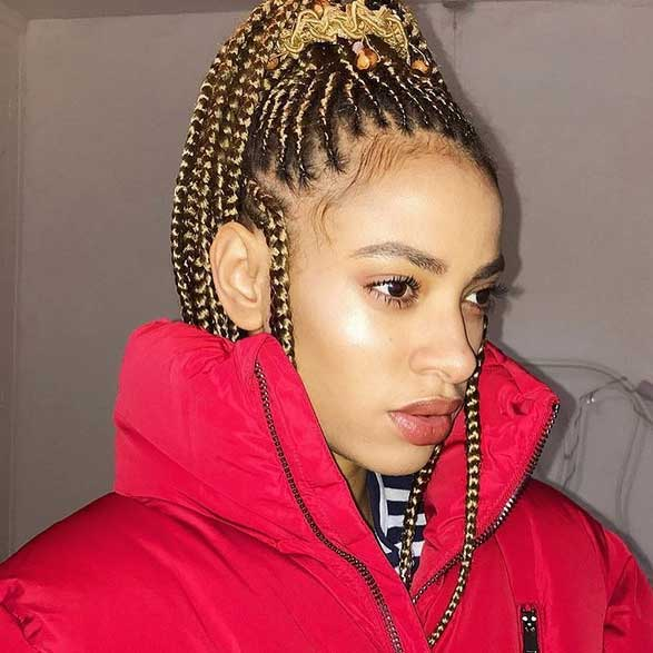 Box Braids Hairstyles For Black Women 6 African American