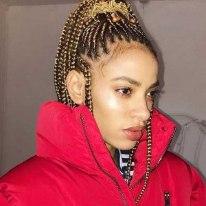 Box-Braids-Hairstyles-for-Black-Women-6 Box Braids Hairstyles for Black Women 6 300x300